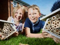 Stapeley youngsters help area's bee population to thrive