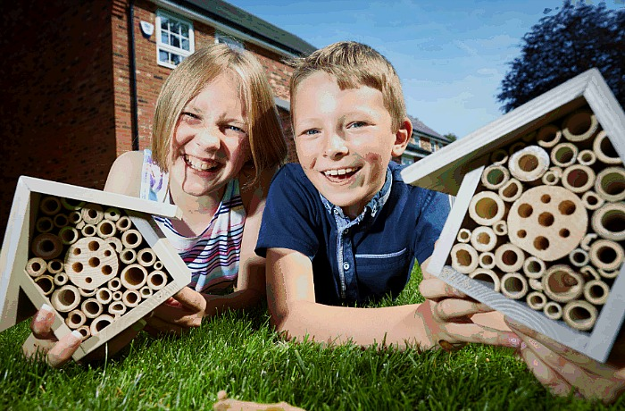 bee population boosted by Stapeley youngsters