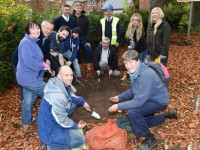 Stapeley volunteers plant hundreds of spring bulbs across parish