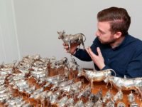 South Cheshire antiques expert moo-ved by amazing cow creamers collection