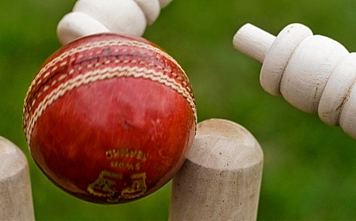 cricket - pic by Graham Dean, creative commons licence