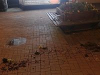 Yobs wreck flower beds in Nantwich town centre