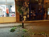 Police investigate vandalism after yobs destroy Nantwich planters and flowers