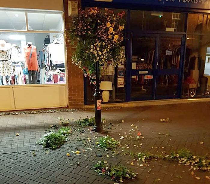damaged plants and flowers in nantwich - pic by Tom Evans