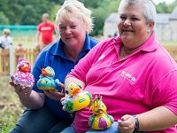 Hospice to stage Mill Island fundraising duck race in Nantwich
