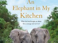 'An Elephant in My Kitchen' book talk at Nantwich Bookshop
