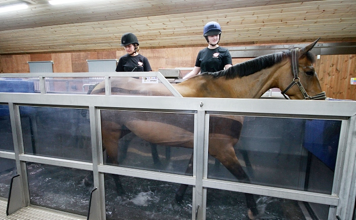 Rookery Equine centre at reaseheath college
