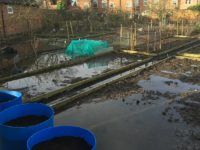 flooded allotments at Brookfield in February 2017