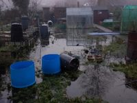 Nantwich allotment holders' anger over flooded plots while councils argue