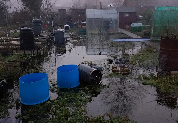 flooded allotment on Brookfield, Nantwich