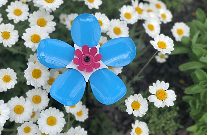 forget me now floral display