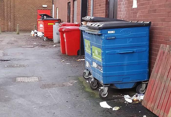 litter and wheelie bins back of Swine Market stores in Nantwich