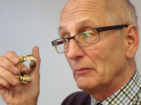 Nantwich auctioneers to sell gold false teeth for £600