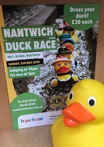 nantwich duck race poster