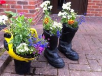 Nantwich in full bloom as residents prepare for judges visit
