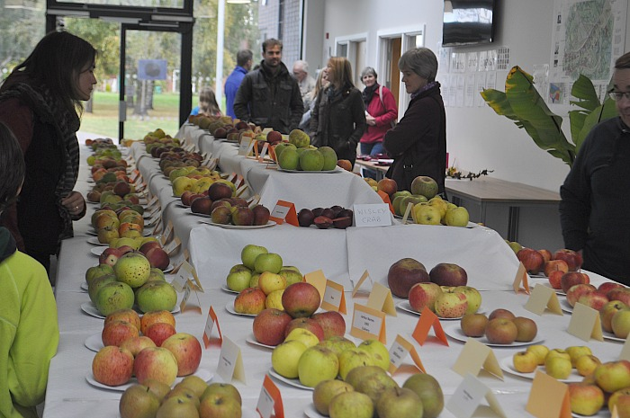 over-100-varieties-of-apples-were-on-show