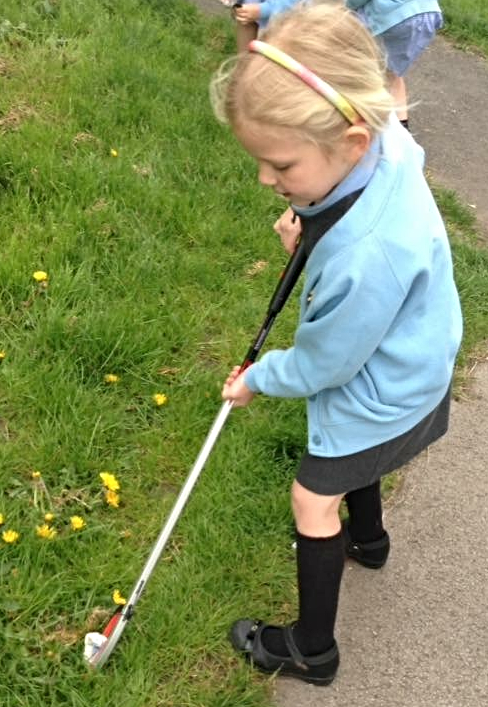 pear tree pupil collecting litter