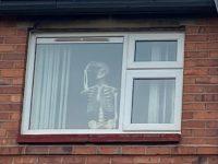 Skeleton found during pandemic lockdown at Nantwich house!