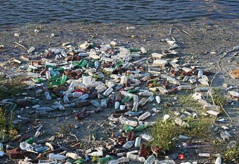 Councillors back Plastic Free Nantwich motion