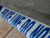 Teenagers arrested in Nantwich after lambs found dead