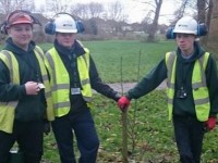Community Orchard flourishes on Nantwich Riverside