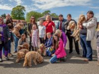Doggy Day Out families gather in Nantwich for Elle's Wishes