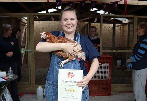 British Hen Welfare Trust rehomes 5,000th hen in Cheshire