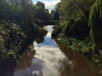 "Final Nantwich Museum ""River Weaver"" talk takes place August 31"