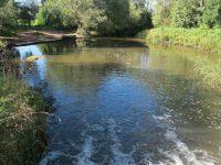 Nantwich man who died in River Weaver tragedy named as Robert Kynnersley