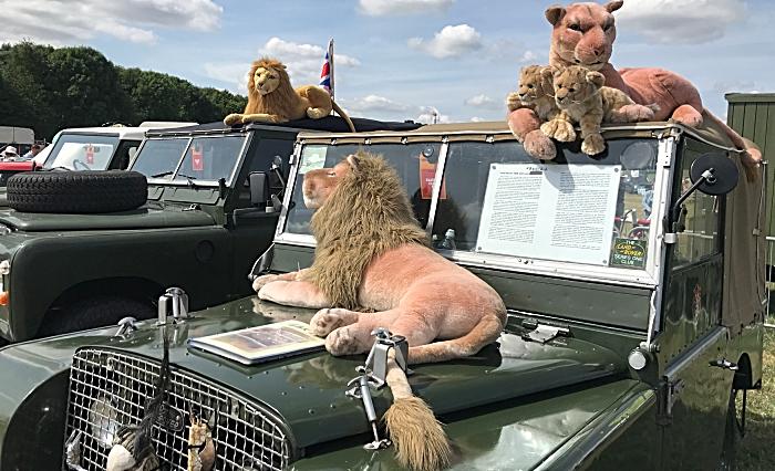 safari comes to Nantwich Show