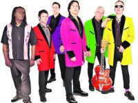 70s sensation Showaddywaddy to play at Nantwich concert