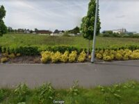 Developers announce dementia care home plan in Shavington