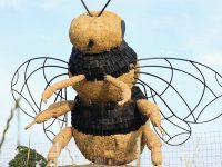Giant bee sculpture unveiled by Snugburys near Nantwich