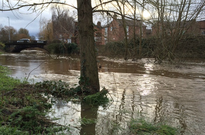 swollen River Weaver floods paths and Mill Island in Nantwich - pic by Jonathan White