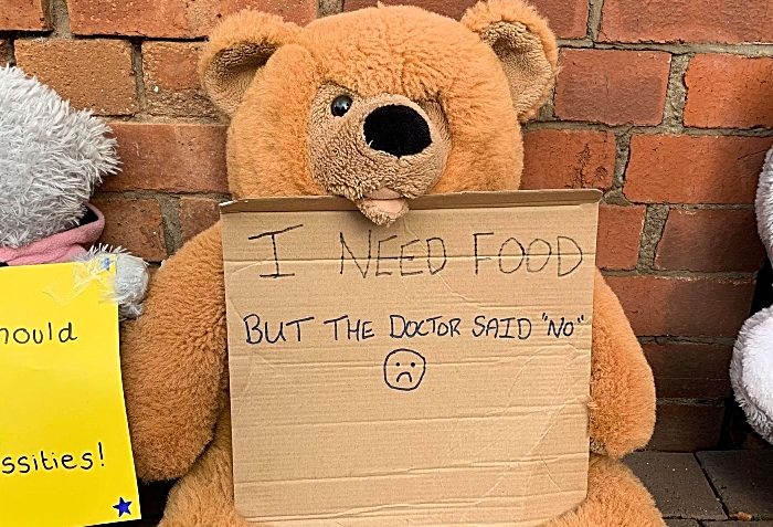 teddy bear needs food