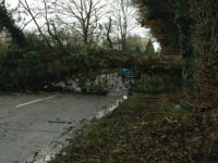 Storm Doris causes havoc across Nantwich and Cheshire