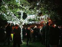 Tree of Light to be unveiled in Nantwich town centre