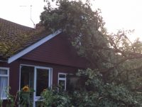 Nantwich couple's shock as trees crash through their home
