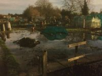 Flooding mystery as Nantwich allotment holders left under water