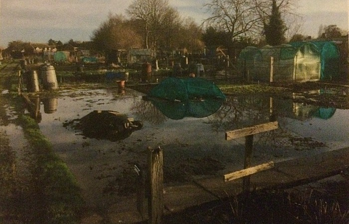 underwater - brookfield allotment site in Nantwich